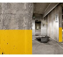 Diptych Yellow by Greg Riegler