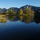 Loisach Valley and Wetland by Daidalos