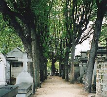 Pere Lachaise Avenue by Lawrence Gillies
