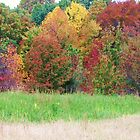 autumn layers by ANNABEL   S. ALENTON