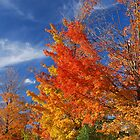 Autumn's Fire by Steve Hildebrandt