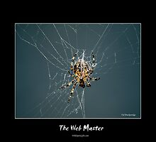 The Web Master by Val  Brackenridge