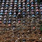Old Roof Tiles by Robert Winslow