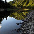 Waioeka gorge by Paul Mercer