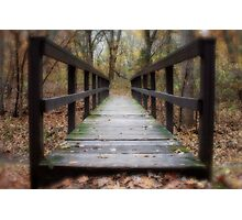 Life is a Journey Photographic Print