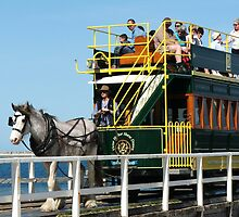 The Horsedrawn Tram @ Victor Harbor by ScenerybyDesign