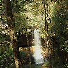 Northrup Falls  by kathy s gillentine