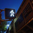 Precinct: This Way by A L G O