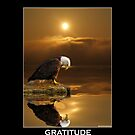 """Gratitude"" Bald Eagle by Skye Ryan-Evans"