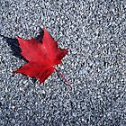 The Maple Leaf Forever by Steve Hildebrandt