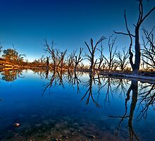 Noora Basin Dawn by Dave  Hartley