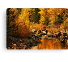 Sierra Gold Canvas Print