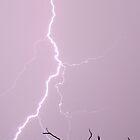 Lightning Bolt 12-08-2009 by Darren Williamson