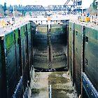 Seattle, Ballard, Hiram M. Chittenden Locks by Igor Pozdnyakov