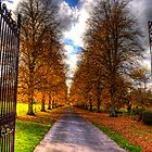 Autumn Colour by NeilAlderney