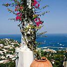 Beautiful Capri by imagic