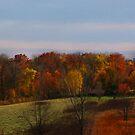 Fall Meadow by jpryce