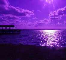 Heaven turns Purple by florene welebny