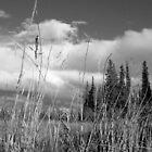 Galena, AK by HillbillyDlux