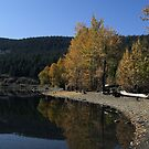 Monty Lake In The Fall by Jeff Ashworth & Pat DeLeenheer