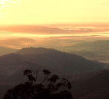 Sunrise over the fog by Liza Yorkston