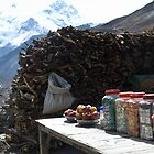 Tea shop in Himalayas  by Erdj