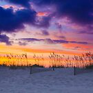 Stormy Skies Ahead by CDNPhoto