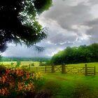 Gorhambury Estates by lochithea