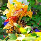 Beauty of Flowers III by lochithea