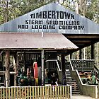 Timbertown Steam Sawmilling & Logging Company by odarkeone