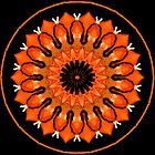 Kaleidoscope Crazy by judygal