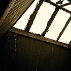 Antique Sky-Light by RollZLX