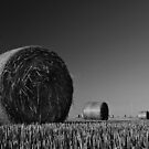 Bales by Mark Robson