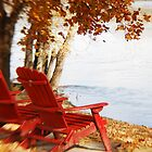 Enjoy the River by Lynn McCann