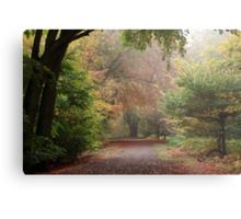 Dreamy Paths of Autumn Gold Metal Print