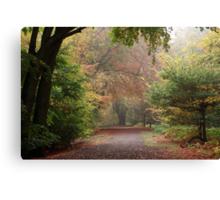 Dreamy Paths of Autumn Gold Canvas Print