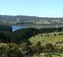 Myponga Reservoir by ScenerybyDesign