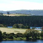Myponga Reservoir (upper side 4) by ScenerybyDesign