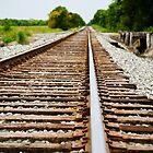Train Tracks by tammykayphoto