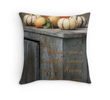 Happy Thanksgiving from Florida Throw Pillow