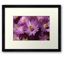 Kissed by... Framed Print