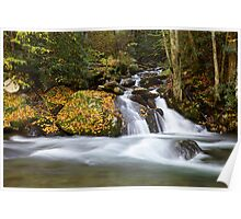 Mannis Branch Falls II Poster