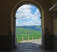 View from Motovun by Rasevic