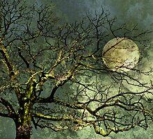 Mysterious by Stephen Warren
