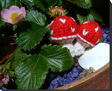 knitted toadstools by Jenny Marshall