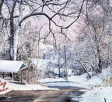 Snow for Christmas by Nadya Johnson