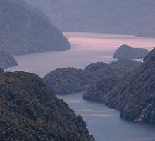 Doubtful Sound 02 by Albert Sulzer