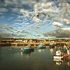 Harbour Approach by Nigel Finn