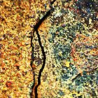 Fractured Landscape by Wayne Gerard Trotman