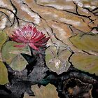 Red Water Lilly.16x20 acrylic on canvas  by eoconnor